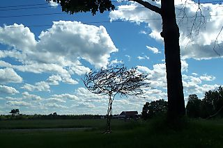 Treewithclouds